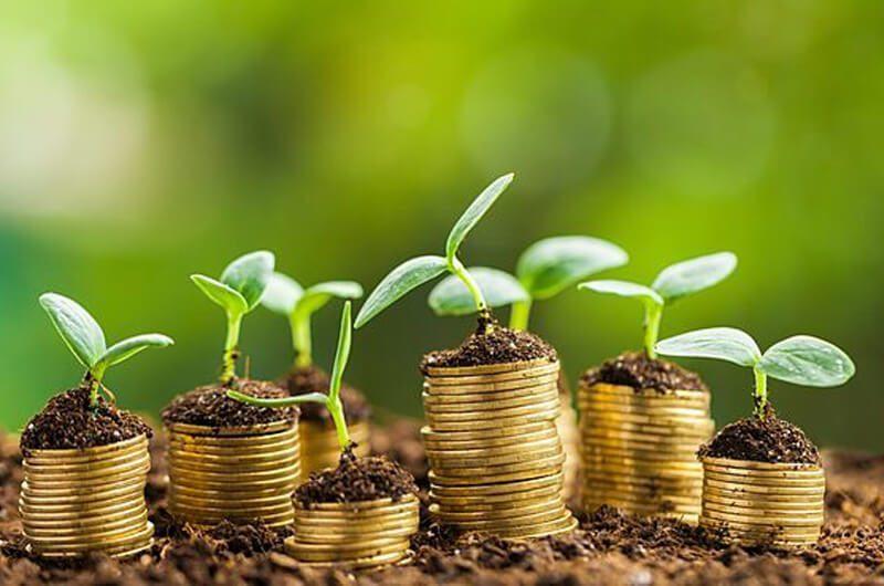 Investasi Zaman Milenial