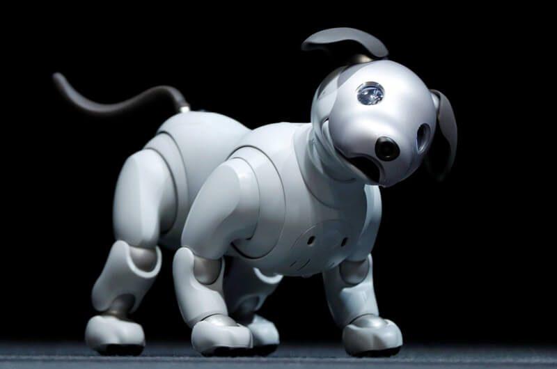 Artificial Intelligence berbentuk hewan peliharaan