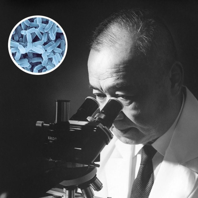 Peneliti Minoru Shirota mengembangkan minuman yakult selama 5 tahun